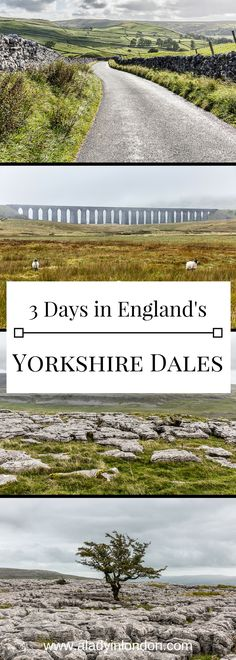 A lovely guide to spending 3 days in the Yorkshire Dales in England. #england #travel #yorkshire #yorkshiredales