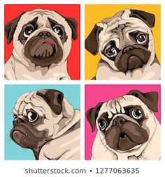 Four portrait of a pugs in a bright coloring Pop Art style. Humor card, t-shirt … Four portrait of a pugs in a bright coloring Pop Art style. Humor card, t-shirt composition, hand drawn style print. Pet Dogs, Dog Cat, Animals And Pets, Cute Animals, Dog Illustration, Pug Love, Dog Portraits, Animal Paintings, Clipart