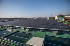 The Factors of Local #EnergyTransition in the #Seoul Metropolitan Government: The Case of Mini-PV Plants #SolarEnergy #SouthKorea
