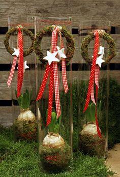 http://holmsundsblommor.blogspot.se/2012/12/mossa-mossa.html  Hyacint i glasvas med mosskrans