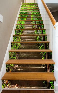 Picture this walkway in the woods leading to a place of peace and tranquility! Always thought of your stairs as a necessary but wasted space in your home? Now you can do something about that, and we have made it so easy for you. We produce stunning, durable, imagery in sizes designed to fit