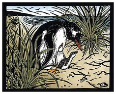 Gentoo Penguin & Chicks
