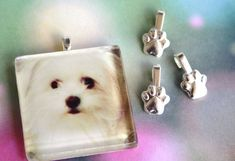 Jewelry Bails for the dog, cat and animal lover! Great to make keepsakes of your pets! I love Maltese dogs!