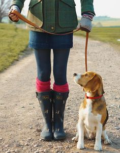 love those wellies, the tights, the socks, the short skirt, the jacket - oh, and the dog too.