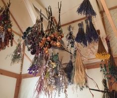 """nocturnal-wanderess: """" honeyfawns: """" a very lovely florist showed me where she dries her flowers for autumn arrangements, it was so pretty! """" Get lost in my head✨ """" Witch Cottage, Witch House, Iron Wall Art, Yarn Animals, Outlander, Nature Witch, Witch Room, Pagan Witch, Witches"""