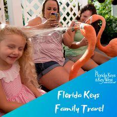 Florida Keys Family Activities & Entertainment Information Florida Keys, Family Activities, Key West, Grandparents, Family Travel, Families, Museum, Entertaining, Explore