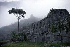Peru-Machu Picchu