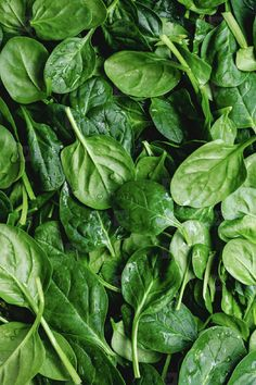 Top view on fresh organic spinach leaves. Healthy green food and vegan background. photo by Edalin on Envato Elements Vegetables Photography, Fruit Photography, Spinach Leaves, Baby Spinach, Fruit And Veg, Fruits And Veggies, Photo Fruit, Food Wallpaper, Greens Recipe