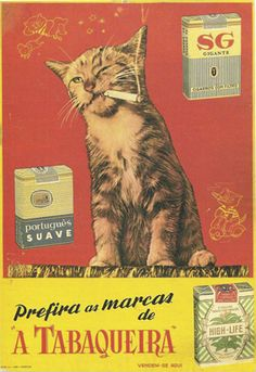 """Cats in Art and Illustration: Tabaqueira, (Scanned from the book """"Portugal Século XX, Crónica em Imagens, by Joaquim Vieira) Posters Vintage, Vintage Images, Vintage Advertising Posters, Vintage Cigarette Ads, Pub Vintage, Weird Vintage, Vintage Metal Signs, Image Chat, Photo Chat"""