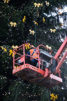 La decorazione è impegnativa! 30.000 luci led a basso consumo energetico e 1.000 fiocchi gialli vestiranno l'albero di Natale di 30 metri che DHL Express ha donato alla città di Milano. #IlluminaMi