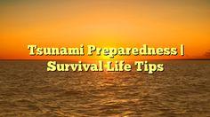 Tsunami Preparedness | Survival Life Tips - http://4gunner.com/tsunami-preparedness-survival-life-tips/