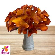 Halloween is in the air! – Eblooms Farm Direct Inc. Calla Lily Flowers, Fall Flowers, Cut Flowers, Fresh Flowers, Flower Vases, Classic Romantic Wedding, Monsoon Wedding, Fall Flower Arrangements, Happy Thanksgiving Day