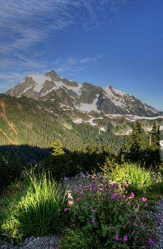 View of Mt. Shuksan - North Cascades National Park