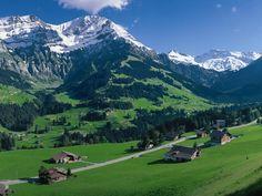 Adelboden, Switzerland   (Google Image Result for http://behav.zoology.unibe.ch/sysuif/images/esh/adelboden1.jpg)