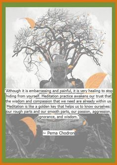 pema chodron quotes although it is embarressing and painful - Google Search