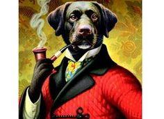 classy-pup