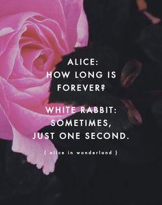Alice: Per quanto tempo è per sempre?Coniglio bianco: A volte, solo un secondo.