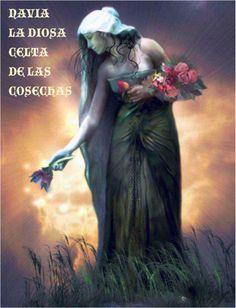 LA DIOSA CELTA DEL SIGNO DE TAURO Y DE CAPRICORNIO Si has nacido bajo uno de estos dos signos de tierra. Tauro o Capricornio, la diosa que rige tu Destino es Navia. La diosa Celta de las cosechas, de la abundancia, la suerte y la fortuna. Ella es la dama de las flores, las semillas y los frutos. Se dice que nada en la naturaleza esta fuera del alcance de su mano. Si te pones bajo su amparo, esta Diosa, te dará siempre ese toque de suerte que se necesita para salir adelante.