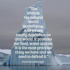 David Attenborough quote about the environment Our Planet, Save The Planet, Planet Earth, We Are The World, Change The World, Our World, David Attenborough Quotes, Save Our Earth, Environmental Issues