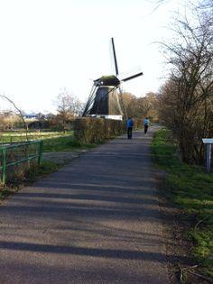 Ondanks de rug en knieblessure van twee van ons passeren we prachtige molen De Zwarte Ruiter en komen vervolgens op de Oosteinderweg, waar onze auto staat. De eerste etappe zit er op.