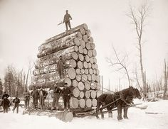 This picture was taken in the 1890's and shows a group of loggers hauling a heavy load. It is hard to even picture how they got the logs stacked that high. It is also hard to imagine how they keep it from tipping over.