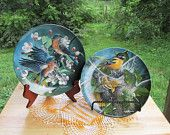 Bird Collector Plates | Wild Bird Lover Gift | Gift for Birdwatcher