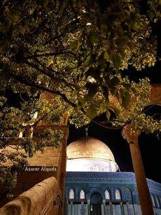 Rare Historical Photos, Dome Of The Rock, Palestine, Mosque, Taj Mahal, Architecture, Building, Travel, Art