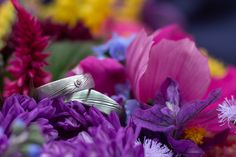 Snubní prsteny  Anna + Jan - Couple Memory Anna, Wedding Rings, Memories, Engagement Rings, Plants, Memoirs, Enagement Rings, Souvenirs, Plant