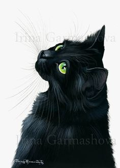 Black Cat Print Emerals Eyes by Irina Garmashova