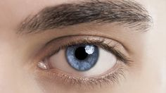 Scientists have created lenses that refract light in the same fashion as the lens in the h...