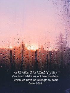 hadith aesthetic quran quotes