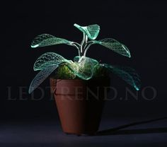 Just think as if green leafs may lighten? She designed graceful plant lamps light up a room with leafy glow. Table Lamp Base, Lamp Bases, Led Lampe, Plantar, Living Room Art, Modern House Design, Light Decorations, Flower Pots, Planter Pots