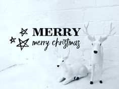 MERRY MERRY CHRISTMAS | We would like to wish you all a wonderful happy and safe Christmas!! Thank you for all your love and support through out 2015. We cannot wait to share with you what is new in 2016. Lots to come...stay tuned!! The shop will be closed from Christmas Day and we will be enjoying a short break until we return on Monday 4/1/16.  Happy Holidays!!! Amanda & Mel xoxo