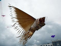 palm leaf fish kite by Kadek Armika from Bali at the kite fetival in Dieppe, Haute, Normandie