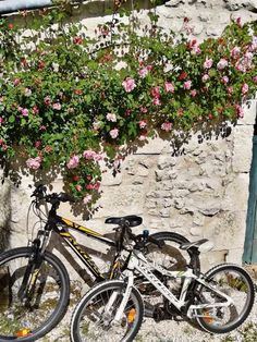 If you would like #velos to enjoy a #bikeride on your holiday in the #CharenteMaritime ... contact Chris at @BikeHireDirectFrance Charente Maritime who has #bikes ready for you to #pedal away! 🇫🇷🚲 For more information on our great value bike hire visit the link in our bio 🙂 🇫🇷🚲 #NouvelleAquitaine #France #BikeHireDirect #DispoVelo #French #cyclinginFrance #cycling #cyclisme #Sainte #Pons #LaRochelle #Royan #Jonzac Aquitaine, Bike, France, Holiday, Cycling, Bicycle, Vacations, Bicycles, Holidays