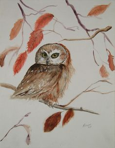 'Screech Owl in Autumn' by Millie Lou