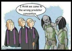Religion. And Predators. Ha!