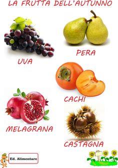 frutta+dell'autunno.png (1119×1600)