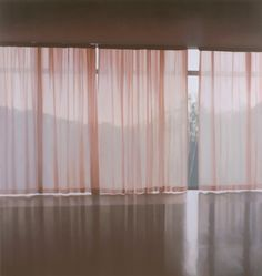 Paul Winstanley . Veil 10, 2001, Oil on Linen, Private Collection