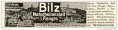 Original-Werbung/ Anzeige 1905 - NATURHEILANSTALT BILZ RADEBEUL - ca. 80 x 20 mm