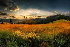 Trei Movile, Romania