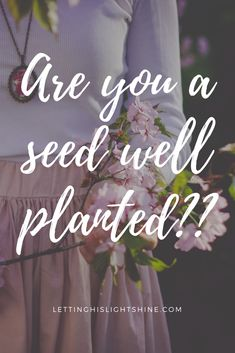 ARE YOU A SEED WELL PLANTED?? Many people are going through life looking fine in appearance, but lacking the necessary nourishment from the word of God to fully flourish, be fruitful, and live the abundant life God has planned for them. Are you one of them? #Jesus #God #Faith #Spiritualgrowth #christianliving