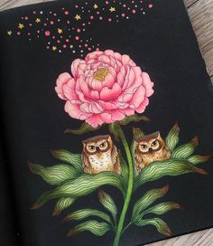 """118 Likes, 23 Comments - Agnieszka (@_hesper) on Instagram: """"📚 Skymnings Timman by @maria_trolle ✏ Faber Castell Polychromos #skymningstimman #mariatrolle…"""""""