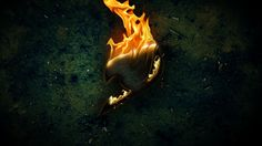 Fairy Tail Logo on Fire Wallpaper