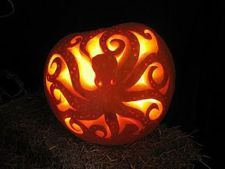 Pumpkin Octopus