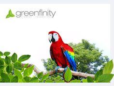 Greenfinity Foundation