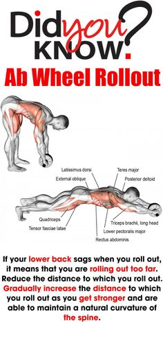 Did you know that you can train and define your abs with more than just the typical crunches and sit ups? These exercises will show you how you can incorporate different methods to add mass and definition, in not only your core, but your back, biceps and Ab Wheel Workout, Ab Roller Workout, Best Ab Workout, Gym Workouts, At Home Workouts, 6 Pack Abs, Back And Biceps, Physical Fitness, Excercise