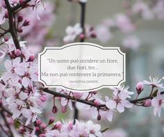 Quote by Mahatma Gandhi  #quotes #quote #aforismi #nature #natura #flowers #citazioni #naturequotes  #MahatmaGandhi