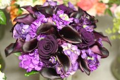 many shades of purple, with black baccara roses