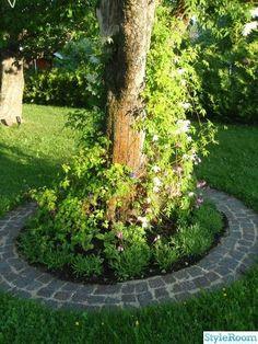 Garden Projects using Sticks and Twigs – Garten ideen Back Gardens, Small Gardens, Outdoor Gardens, Garden Paving, Garden Paths, Garden Pictures, Dream Garden, Garden Projects, Backyard Landscaping